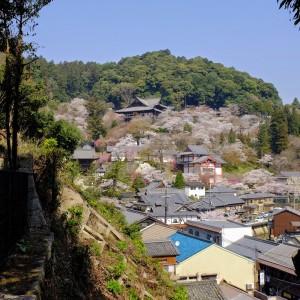 奈良県桜井市初瀬 長谷寺(1)太陽の道と呼ばれるレイライン上 ...