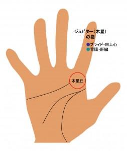 6指の手相(2)