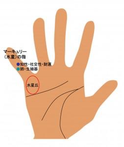9指の手相(5)