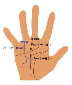 (8)パートナー線