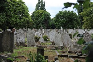 荒れた墓場